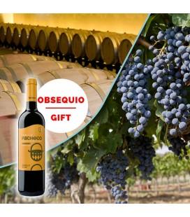 Visita guiada en bodega y viñedos