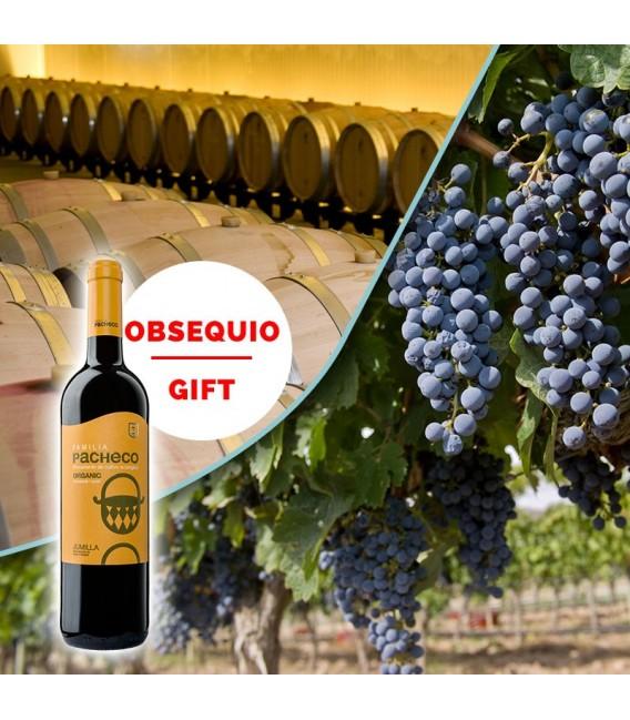 Visita guiada Bodega y viñedos