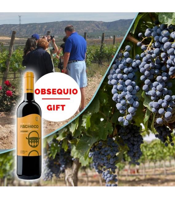 "Winery tours + ""El Calvario"" vineyard"